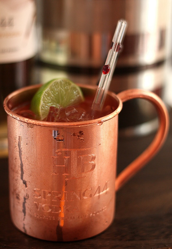Wedding Signature Drinks for Summer Moscow Mule | OneWed.com