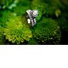 Classic-round-engagement-ring-green-wedding-flowers.square