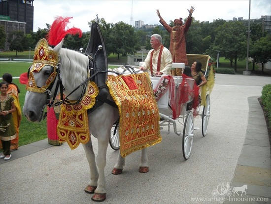indian_wedding_carriage_59