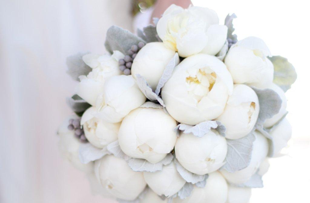Winter white flowers wedding gallery winter white wedding flowers ideabook by onewed inspiration on mightylinksfo