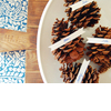 Pine-cone-escort-cards-winter-wedding-ideas.square