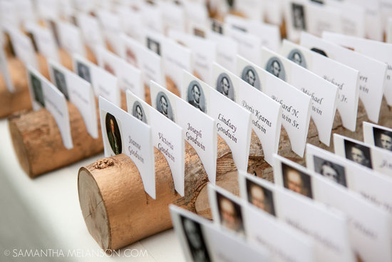 Fallen tree escort card holders