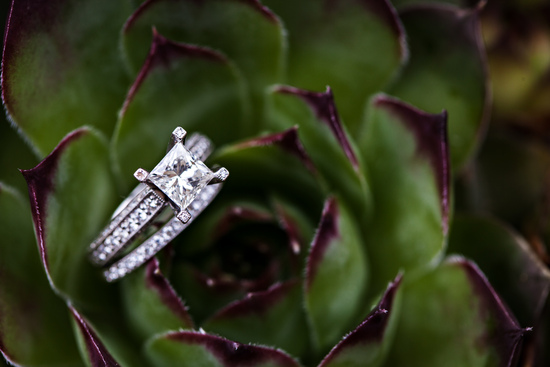 Square diamond engagement ring nestled in a green and purple succulent
