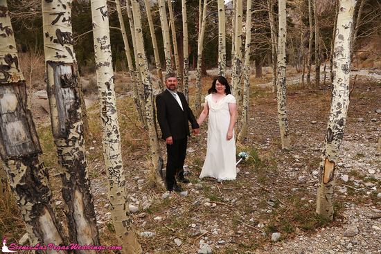 Mt. Charleston Wedding