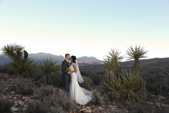 Wedding at Spring Mountain Ranch