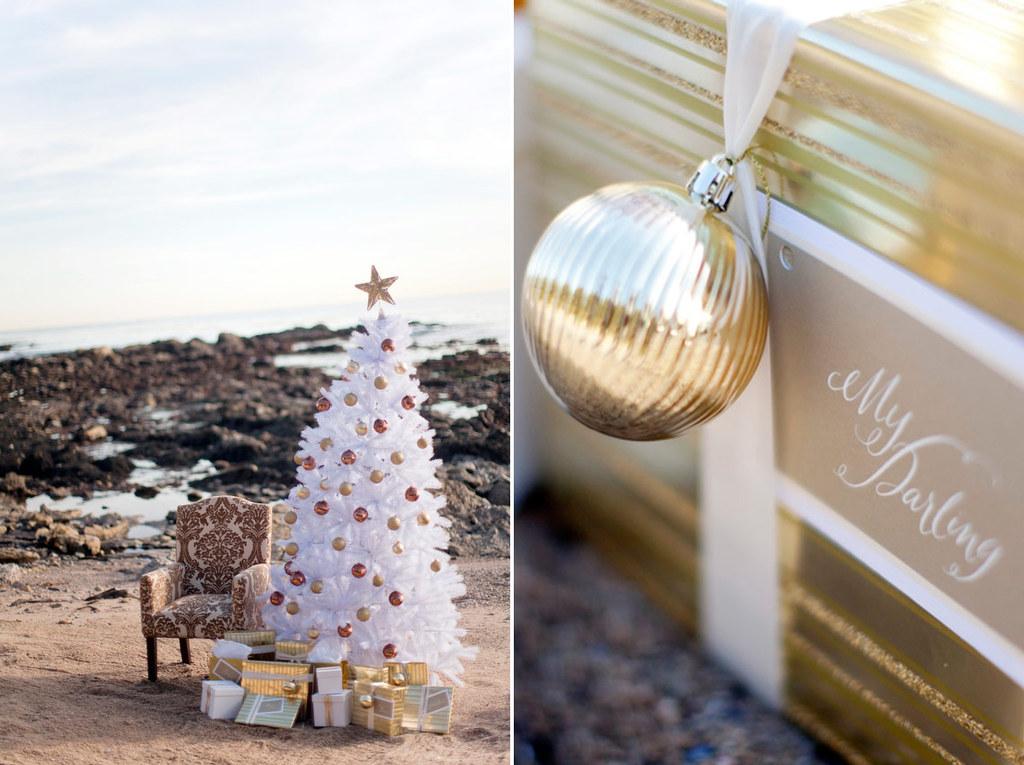 Winter-wedding-california-elopement-3.full