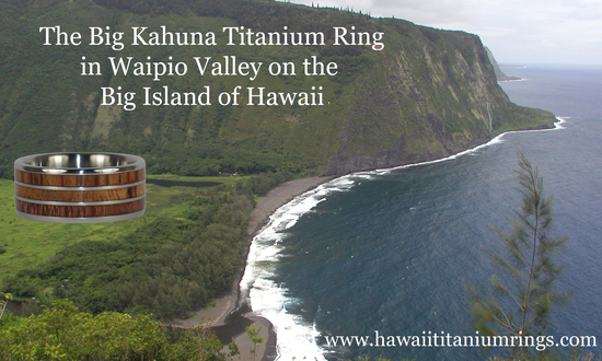 photo of Hawaii Titanium Rings