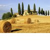 Top-honeymoon-spots-tuscany-2.square