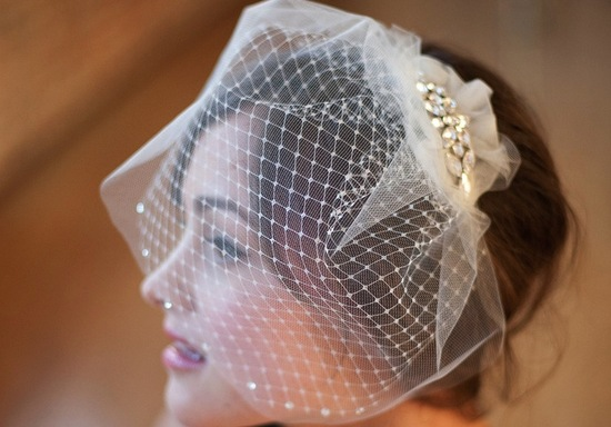 Romantic double layer birdcage veil