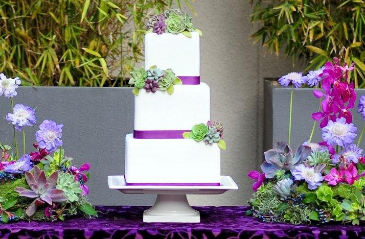 Fondant-succulent-wedding-cake-purple-green.full