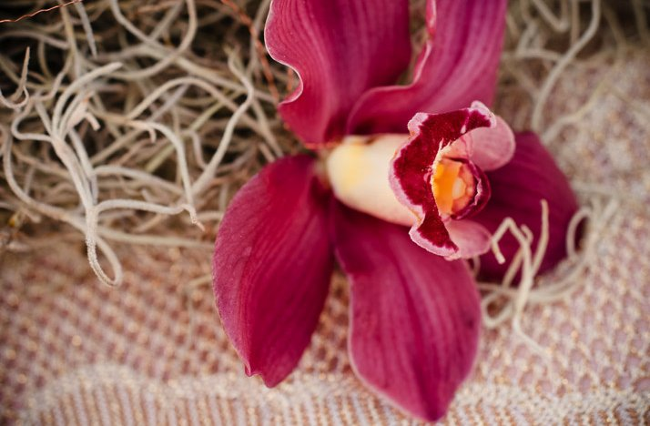 Desert-chic-wedding-purple-orchid-wedding-flowers.full