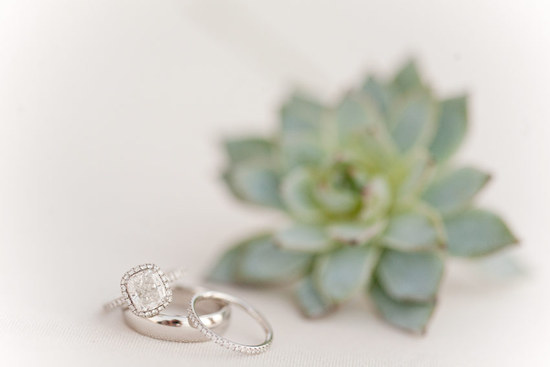 harry winston engagement ring inspiring wedding photography