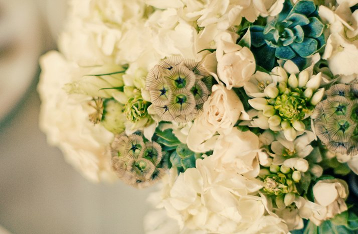 Eco-friendly-spring-bridal-bouquet-white-blue-wedding-flowers.full