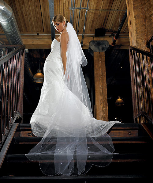 2 Tier Standard Floor Length Tulle Veil