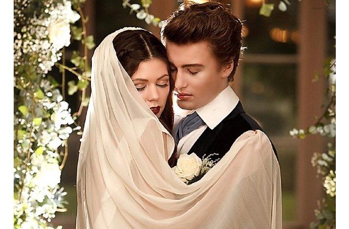 Breaking-dawn-bridal-veil-sleeved-wedding-dress-romantic-wedding-ceremony-arch.full