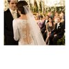 Breaking-dawn-wedding-dress-lace-back-classic-grooms-tux.square
