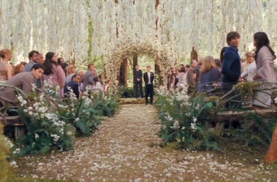 photo of Breaking Dawn Twilight Wedding- handsome groom waits at end of ceremony aisle