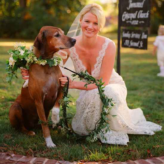 Bride poses with her ring bearer dog
