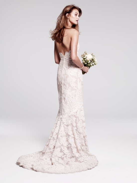 photo of Lace Gown