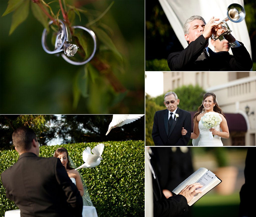 Real-weddings-wedding-ceremony-details-dove-release.full