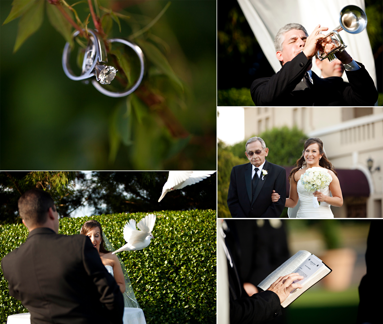 Elegant Spring Wedding With Blue, Silver, Ivory Wedding