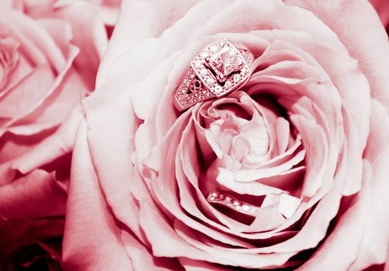 engagement ring and wedding band nestled in pink roses