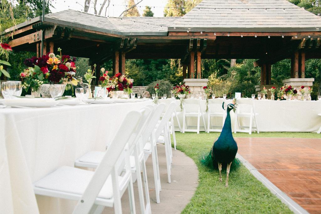 La-arboretum-wedding58.full