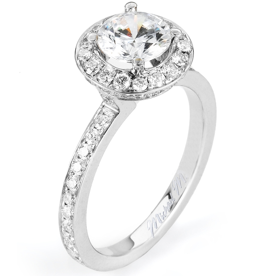 Beautiful Engagement Ring by Michael M.