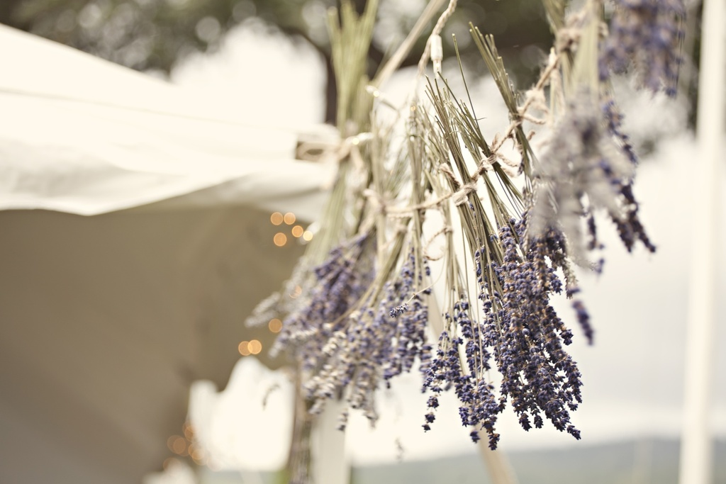 Outdoor-real-wedding-2012-lavender.full