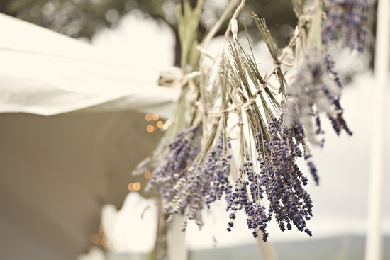 Outdoor wedding venue with hanging lavender