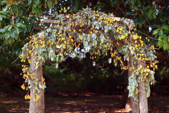 enchanted fall wedding arbor sage yellow and wood
