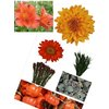 Fall-wedding-flower-ideas.square
