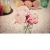 Romantic-peony-wedding-flowers.square
