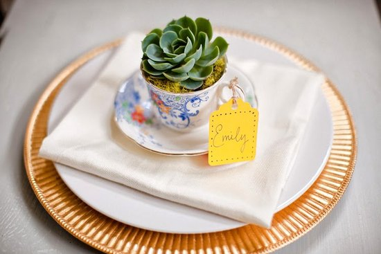 DIY wedding guest favors using succulents that double as wedding reception table decor