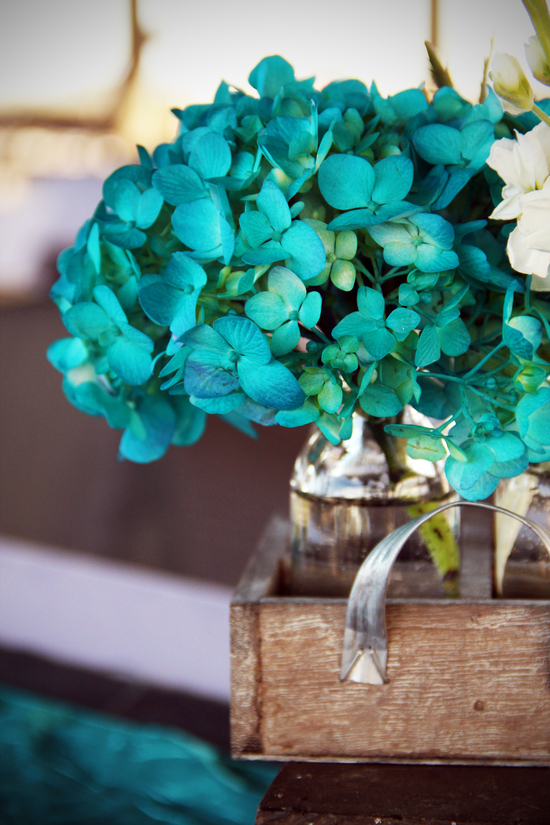 Beasley Wedding Teal Hydrangeas
