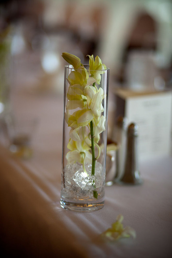 Lovely Orchids in a Glass
