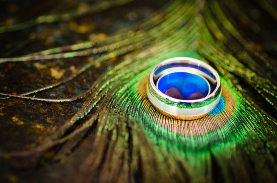 His And Hers Wedding Rings Photographed On Peacock Feather