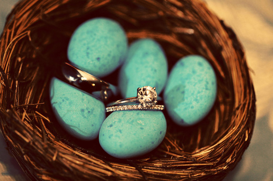 Engagement ring and wedding bands photographed in bird's nest