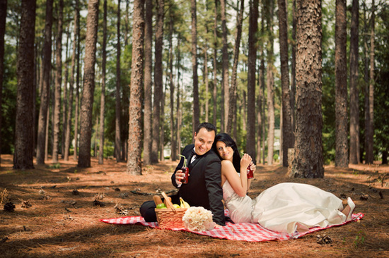 Romantic Wedding Day PIcnic