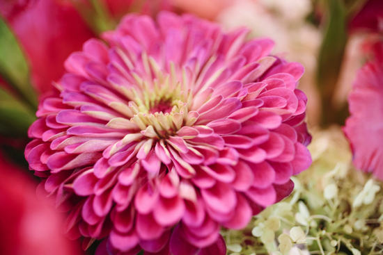 Bright summer wedding hot pink dahlia