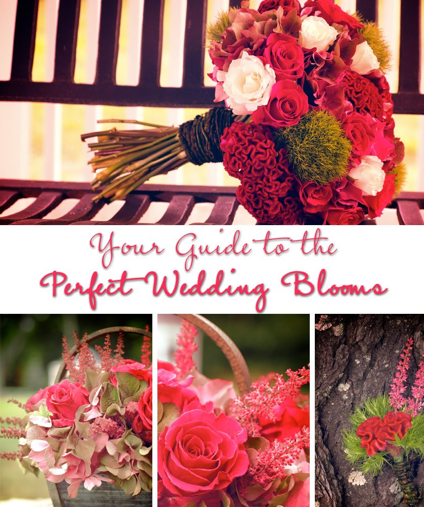 photo of Wedding Flowers 101: Select by Season to Save!