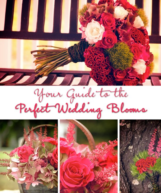 Your wedding flowers guide to the perfect bridal blooms
