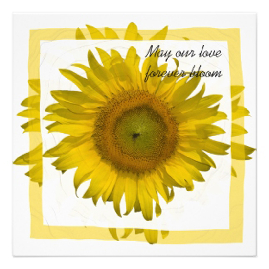 one wed yellow sunflower