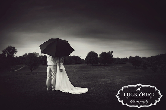 photo of Luckybird Photography