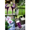 Purple-outdoor-wedding-wedding-shoes-engagement-ring-table-decor-centerpieces.square