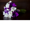 Bridal-bouquets-bold-purple-ivory-wedding-flowers.square