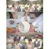 Outdoor-wedding-reception-bride-groom-cut-cake-cropped.square