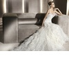 Wedding-dress-manuel-mota-2012-bridal-gowns-feathers-eneida.square