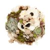 Eco-friendly-bridal-bouquet-succulents-anemones-queen-annes-lace.square