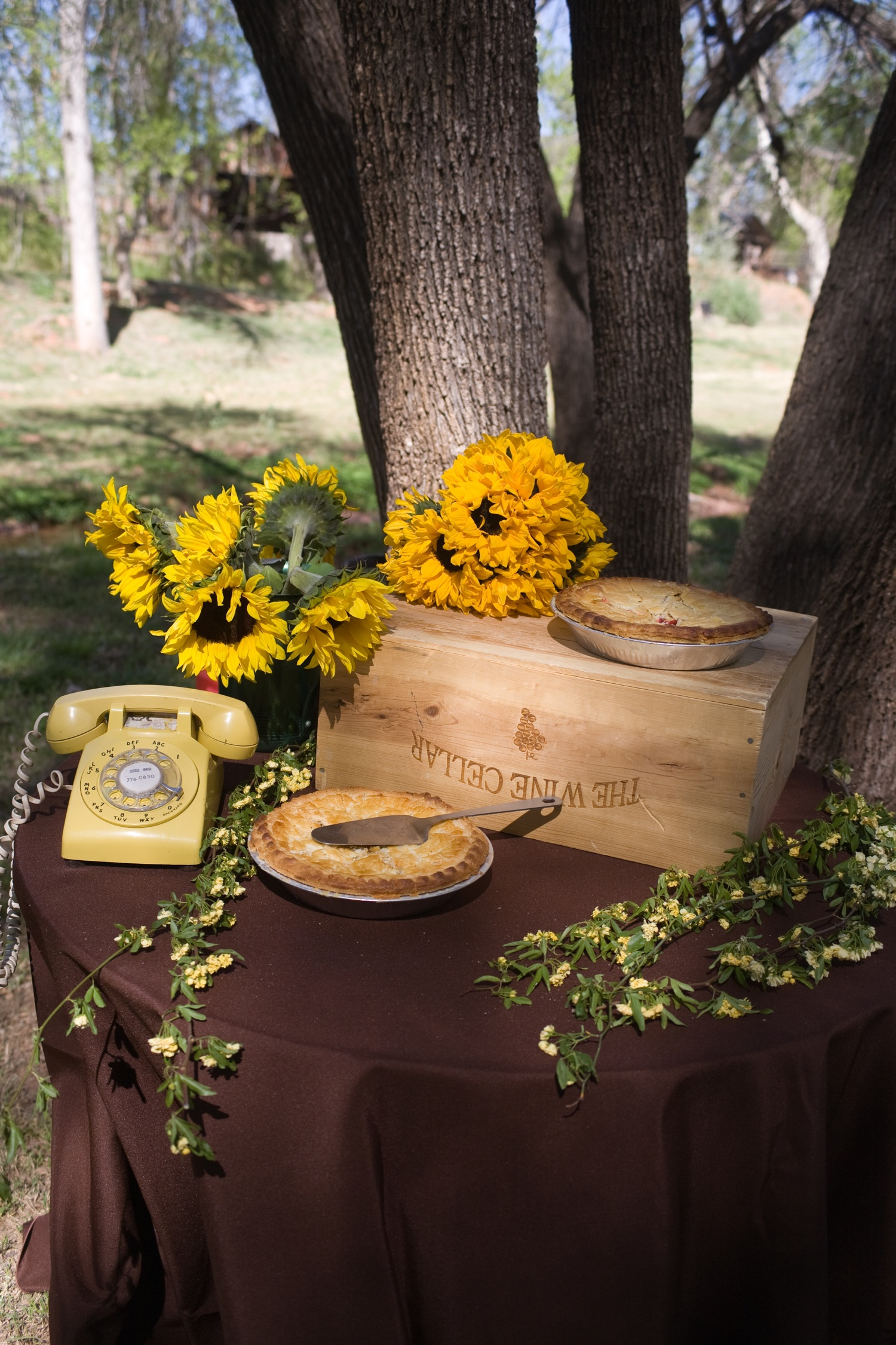 Rustic and retro outdoor wedding reception decor real arizona wedding
